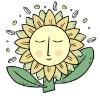 Sunflowernet